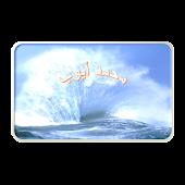 القارئ محمد أيوب - لا اعلانات