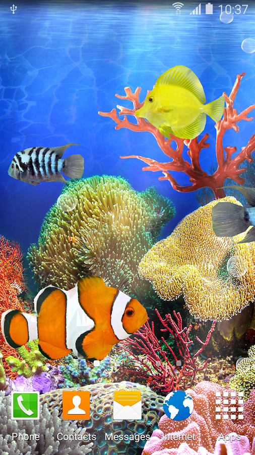 Coral fish live wallpaper android apps on google play for Fish live wallpaper