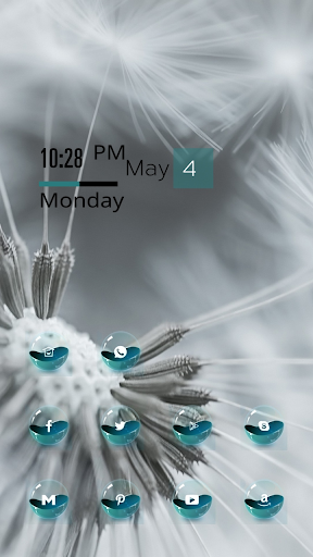 Gray Dandelion Theme