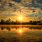 574A0541_picc_pebirds.jpg