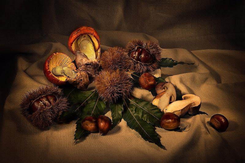 I colori dell'autunno di franca111