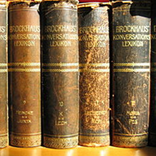 Brockhaus and Efron Dictionary