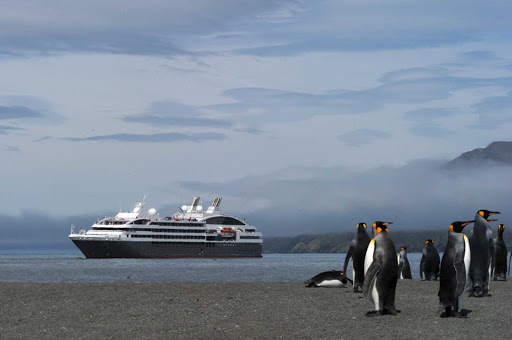 Penguins at the water's edge seen during an expedition cruise to Antarctica on Le Boreal.