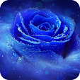 Blue Rose W.. file APK for Gaming PC/PS3/PS4 Smart TV