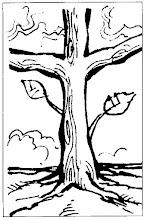 Photo: tronco