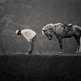 Horse Prayer by Asep Bowie - Black & White Animals ( black and white, macroartsyndicate, horse )