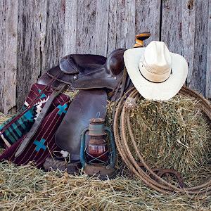 cowboy5 016 recolor.jpg