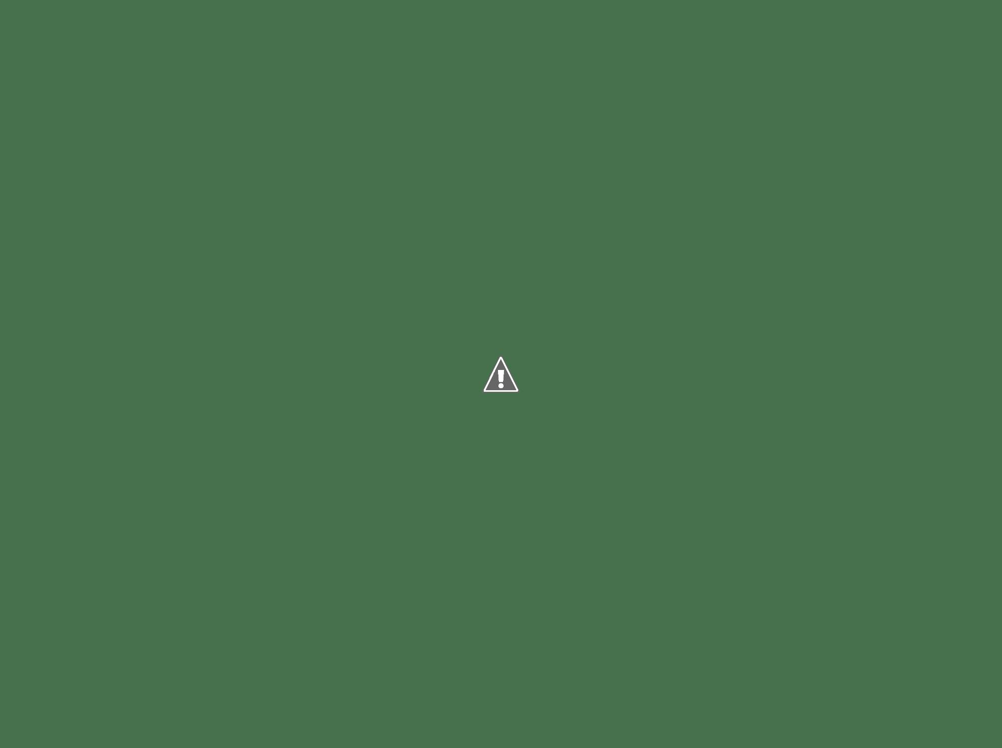 RvMenu - Simple Laravel menu manager