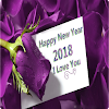 Pretty New Year Messages And SMS 2018 APK