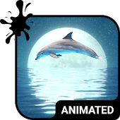 Dolphin Animated Keyboard