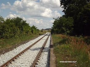 Photo: Po prawej zarośnięty peron 2