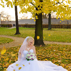 Wedding photographer Elena Nikolaeva (ElenaNikolaeva1). Photo of 31.01.2016