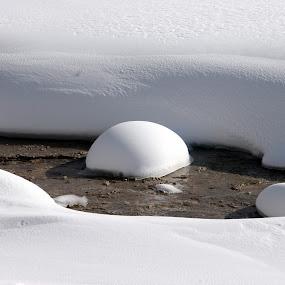 Yellowstone Winter Snow by Jud Joyce - Landscapes Weather (  yellowstone national park,  winter, snow,  white )