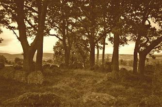 Photo: Druid Circle Inverness
