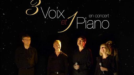 concert-du-28-mai-2016-au-profit-de-larche-a-nancy