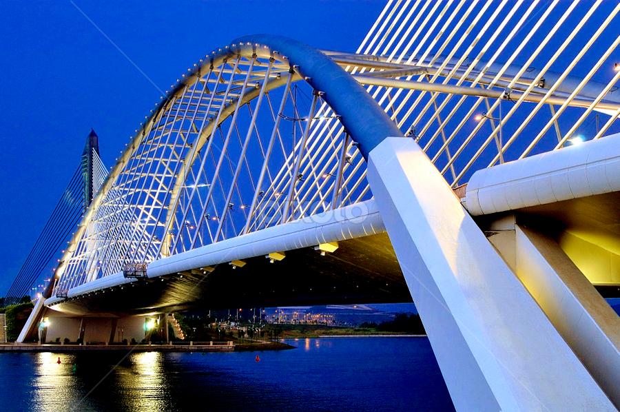 Sri Saujana Bridge by RAVINDRAN JOHN SMITH - Buildings & Architecture Bridges & Suspended Structures ( pwcbridges )