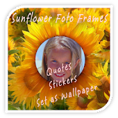 Sunflower Photo Frames Effects