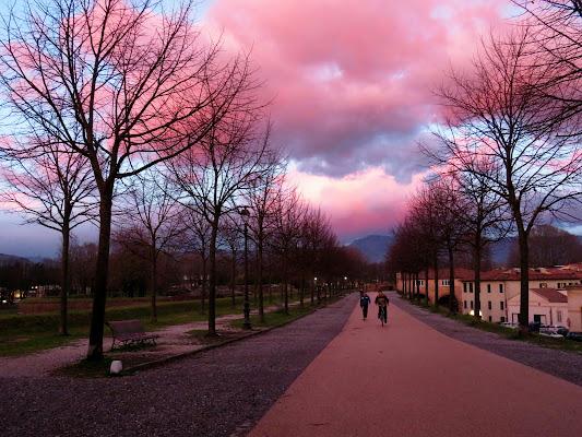 Quando il cielo si tinge di rosa