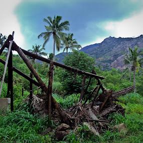 destroyed hut by Ajin Ponipas - Landscapes Forests ( hut, destruction, forest )