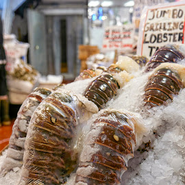 Lobster Tails at the Market by Anita Elder - Food & Drink Meats & Cheeses ( seafood, shellfish, crustacean, shell, tail, lobster )