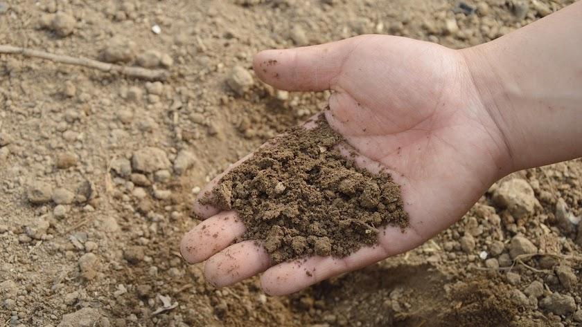 Fertiberia es líder en el sector de los fertilizantes en la UE
