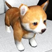 Cute Puppy Sim