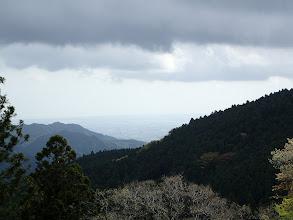 伐採地から松坂と伊勢湾