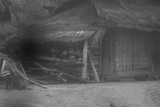 Photo: Šiaurinio Laoso namai.   Northern Laos houses.