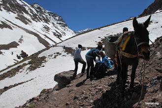 Photo: tras 40 minutos encontramos la mula