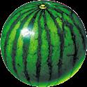 watermelon prober icon