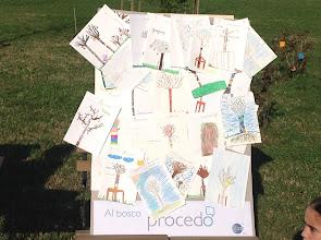 Photo: Bosco Procedo - 21/11/2014