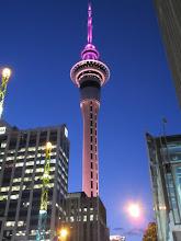 Photo: Esa noche tocaba de color rosa