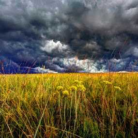 Angry Sky by Steven Butler - Landscapes Cloud Formations ( cloud formations, pwcstorm-dq, storm )