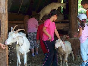 Photo: bambini e animali