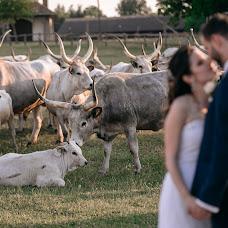 Wedding photographer Peter Sorok (sorok). Photo of 27.09.2018