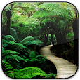 Nature Frames Photo Editor file APK for Gaming PC/PS3/PS4 Smart TV