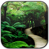 Nature Frames Photo Editor Apk Download Free for PC, smart TV
