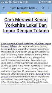 Kicau Kenari Yorkshire Mp3 - náhled