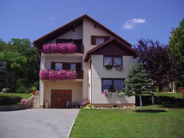 Guesthouse Hodak