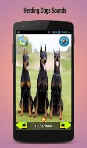 50 Dog sounds screenshot 4