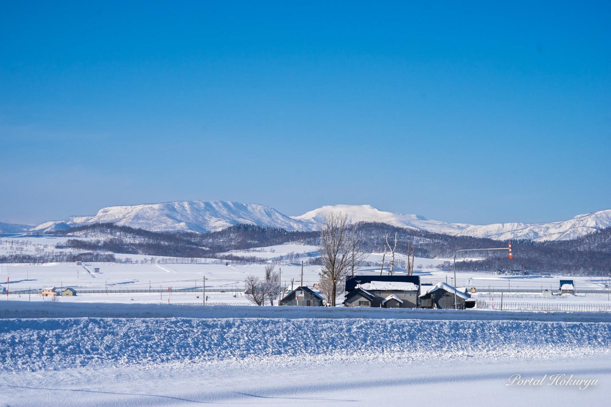 蒼と白の冬景色