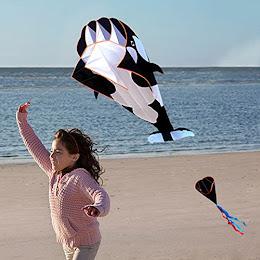 Zmeu textil Balena 3D Mare