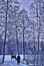 Photo: Memory of Winter Norwegian Wood  ノルウェーの森