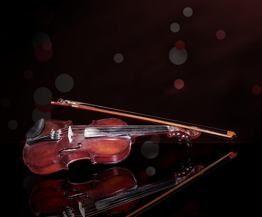 Melody by Mrinmoy Ghosh - Artistic Objects Musical Instruments (  )