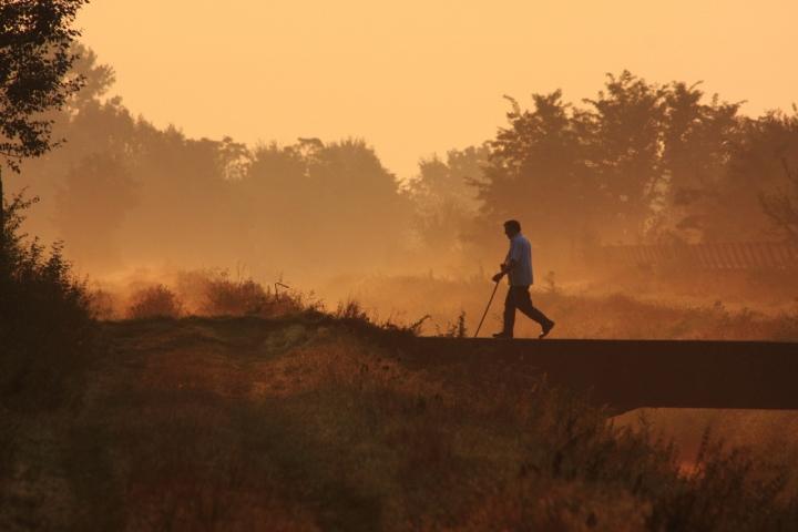 Passeggiata all'alba di alber52