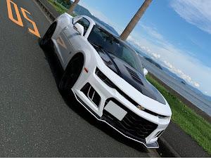 カマロ   LT RS 3.6L カメマレイティブエディション30台限定車のカスタム事例画像 トムさんの2020年09月14日14:51の投稿