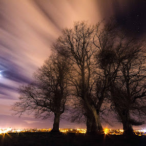 Trees on a moonlit hill by Lorraine Paterson - Landscapes Cloud Formations ( clouds, uk, moon, yeovil, trees, long exposure )