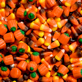 candy corn by Steven Faucette - Food & Drink Candy & Dessert ( brach's, fall, candy )