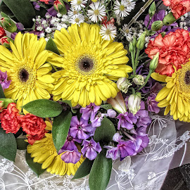 DNI disp 30 by Michael Moore - Flowers Flower Arangements