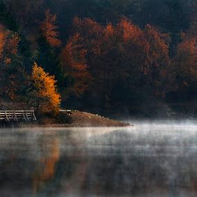 Autumn by Jure Kravanja - Landscapes Waterscapes